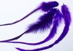 peříčko grizzly-extra fialovo-černé