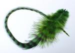 peříčko grizzly-extra zeleno-černé